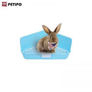 توالت-خرگوش-لوکا-اندازه-متوسط-002