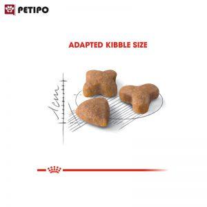 غذای-خشک-گربه-سنسیبل-رویال-کنین-(Royal-Canin-Sensible)-وزن-2-کیلوگرم-00002